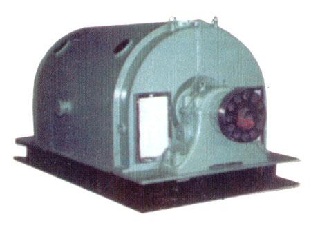 T系列大型三相异步电动机